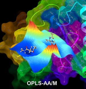 William L  Jorgensen Research Group - OPLS-AA/M for Proteins